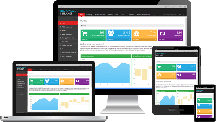 Intranet Portals - Intranet Solution are the lifeblood of what we do at GlobeSoft Qatar.